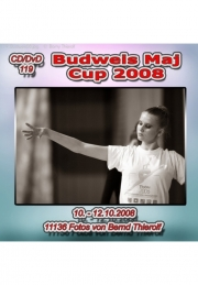 Budweis 2008